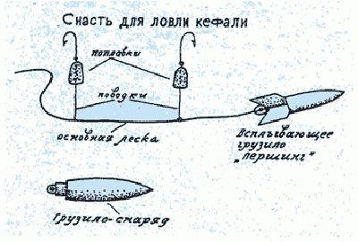 ловля рыбы на удочку на черном море